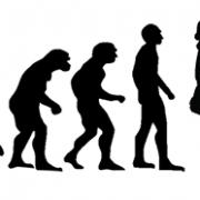 evolution-xmas